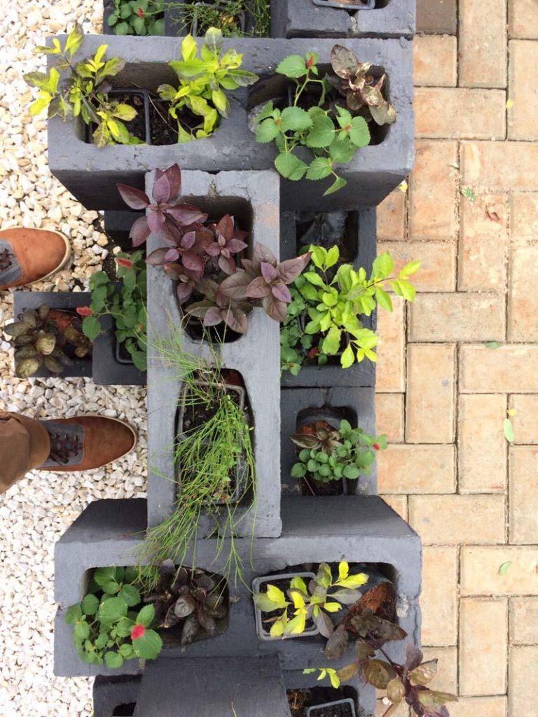 Decoracao com plantas em blocos de concreto