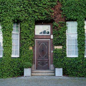 benefícios de morar em uma casa com fachada verde